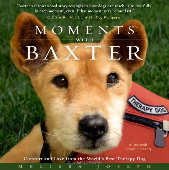 Moments-with-baxter